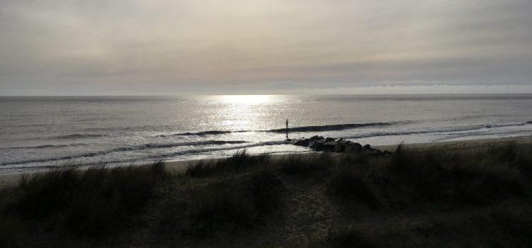 Winterton Dunes – my favourite wild place #30DaysWild