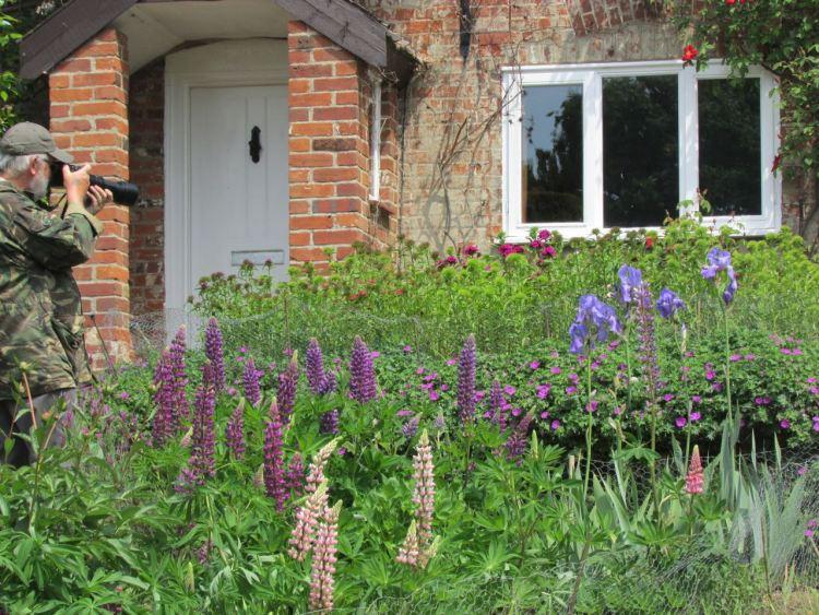 Strumpshaw cottage