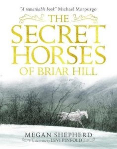 Secret Horses of Briar Hill