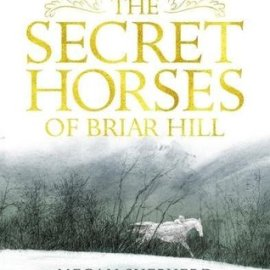 Book Review | The Secret Horses of Briar Hill