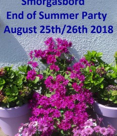 Sally's still partying! Smorgasbord End of Summer Party