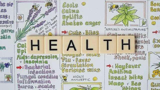 santé par les plantes