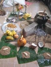 Food at the Thai Pongal