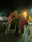 An elephant at Kelaniya Temple