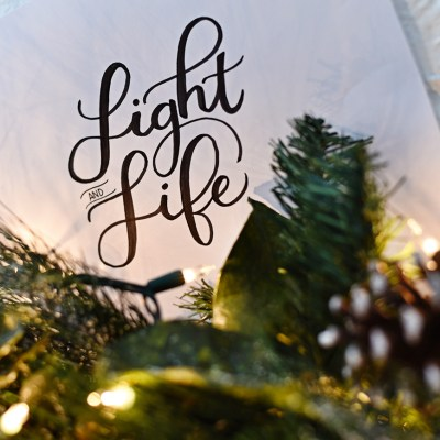 My Mantra for December: LIGHT and LIFE