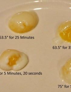 Sous vide quail eggs copy also jen caputo soft boiled or poached rh jencaputo typepad