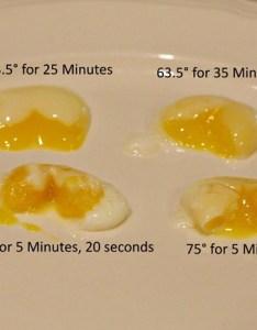 Sous vide quail eggs also jen caputo soft boiled or poached rh jencaputo typepad