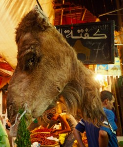Yes, a camel head
