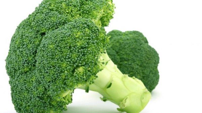 jenis jenis sayuran