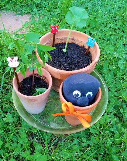 Mini jardin 11