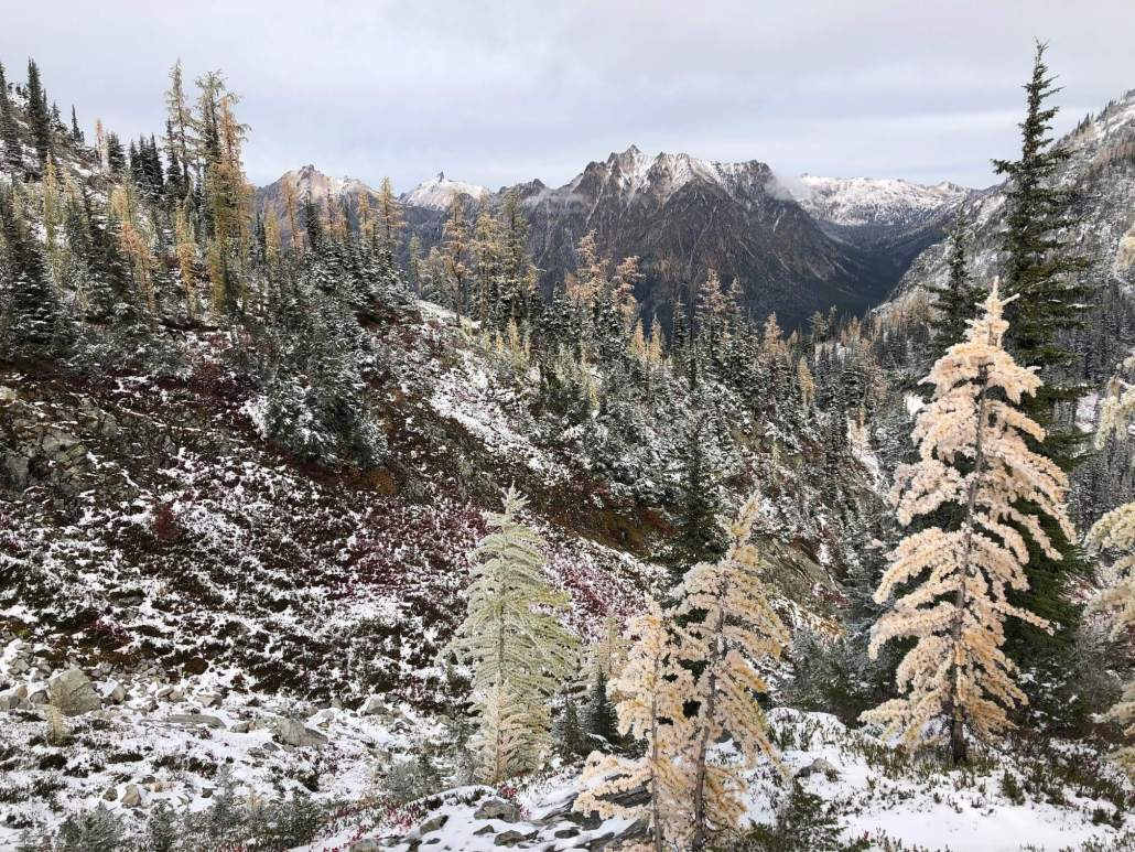 Maple Loop Trail in North Cascades National Park