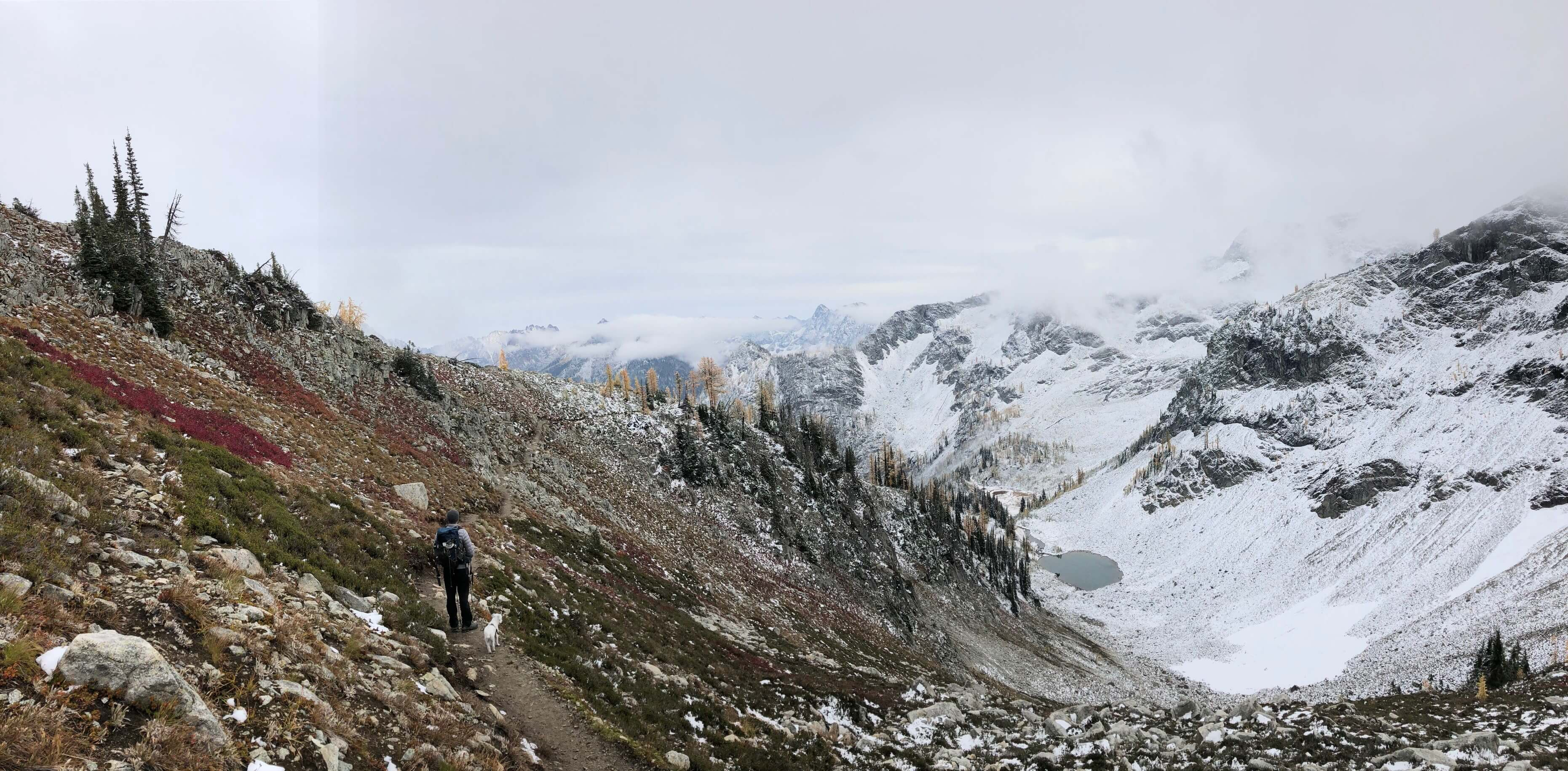 Maple Loop Trail in the North Cascades National Park