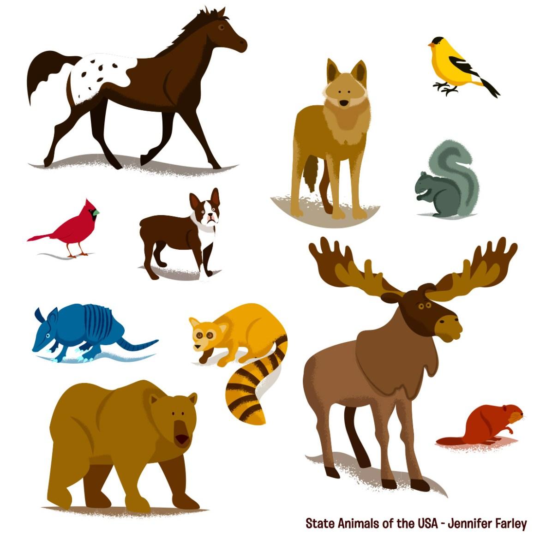 State Animals of the USA Animals Jennifer Farley