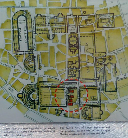 Blueprint showing the ruins in the context of the larger ancient site in the context of modern Rome.