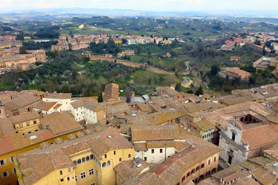 Siena from the top of Torre del Mangia.