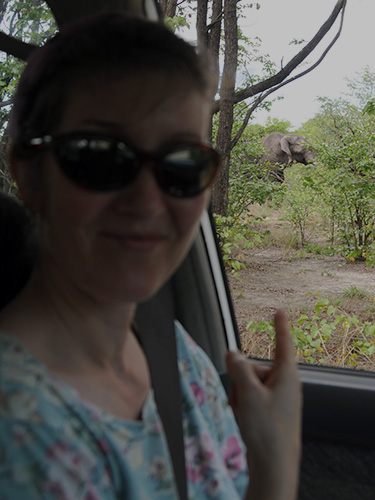Jen in the truck; an elephant outside the window