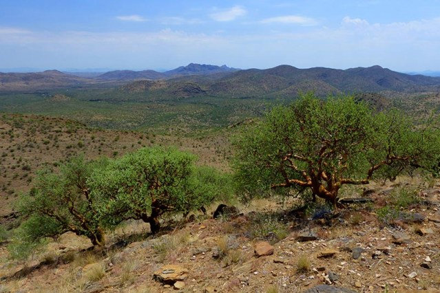 Mountains near Windhoek