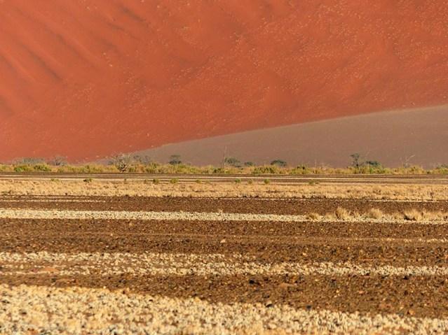 Sand dune, Sesriem, Namib-Naukluft National Park