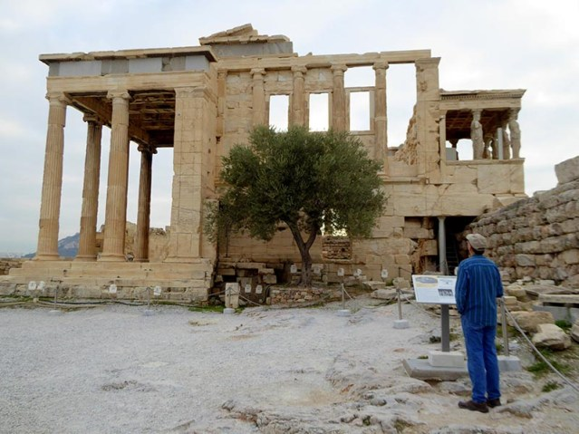 The Erechtheion, Athena's olive tree, and Mike - Jen Funk Weber
