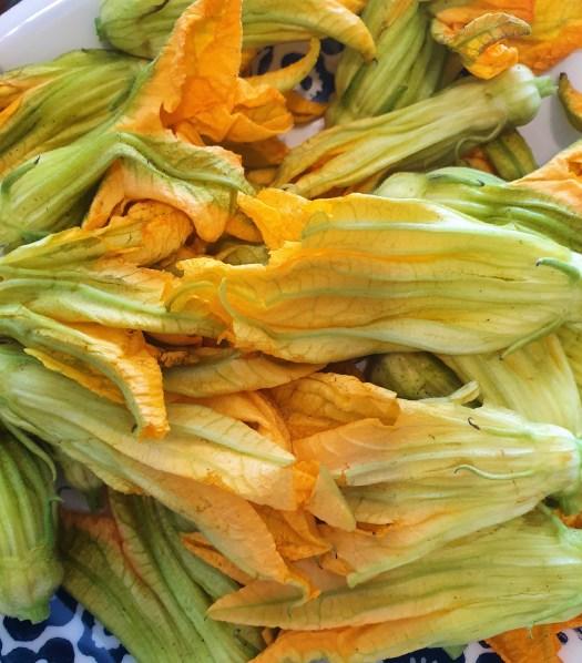 Flores de calabaza rellenas de queso a las hierbas