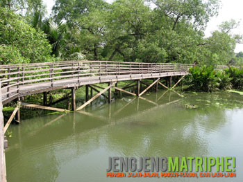 Jembatan kayu di Suaka Margasatwa Muara Angke