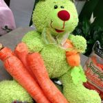 Carrots Aren't Just For Bunnies