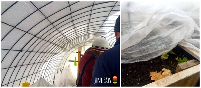 Hoop House Collage