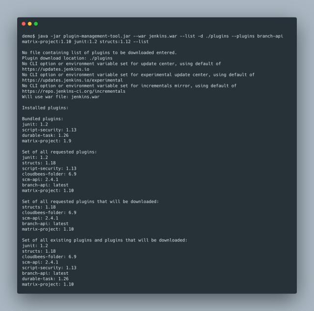List CLI Option Example