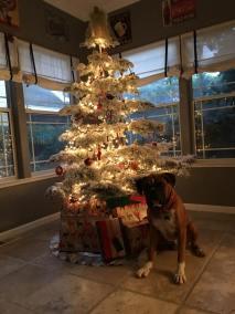 Chavez family Christmas tree
