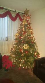 Galarza tree