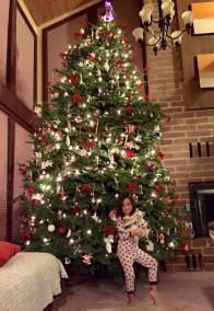 Pomo Family Christmas Tree