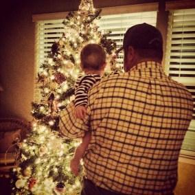 Sgheiza Family Christmas Tree