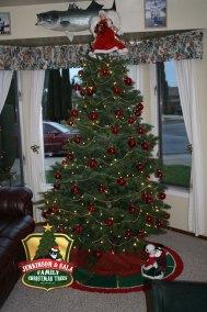 townsend-tree-2012