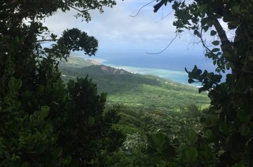 A Taste of Barbados