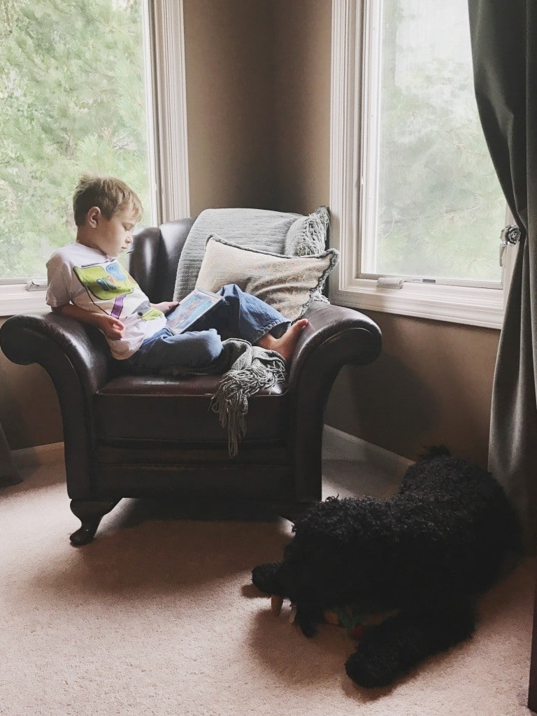 Find the Best Way to Teach Reading at Home! 5 Strategies on How to Teach Your Child to Read at Home!