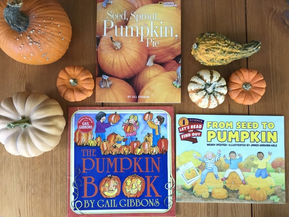 Great pumpkin books for kids: Seed, Sprout, Pumpkin, Pie, The Pumpkin Book, and From Seed to Pumpkin