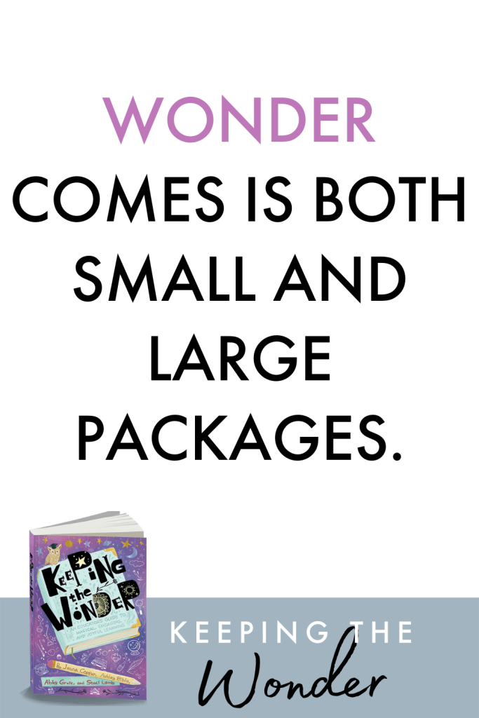 Keeping the Wonder is a professional development book perfect for teachers who are looking to engage their students in joyful learning. Learn more about why the mission for Keeping the Wonder is important for all educators.