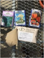 seed donations