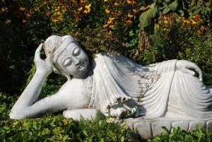 buddha-relaxing