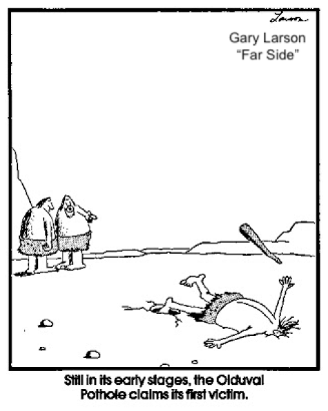 Far Side cartoon by Gary Larson, with humor at the evolutionary process.