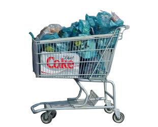 shopping cart examples items balanced forces household definition bag study carts lady stuff friction grocery become abandonment diy guy low