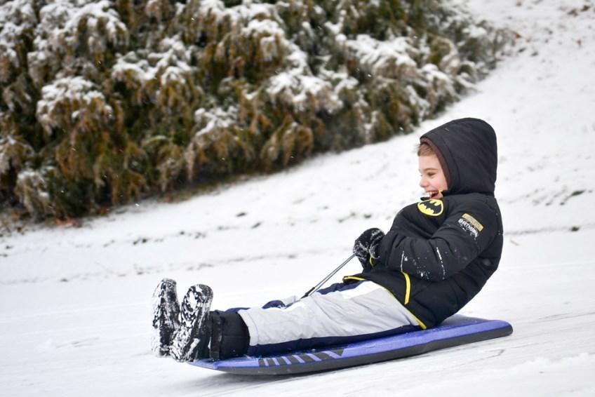Jack on the sled