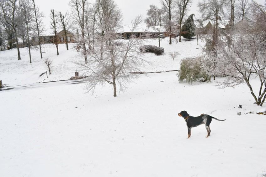 Major in the snow