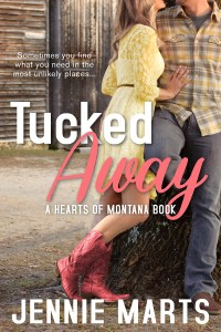Tucked Away Cover- 800 x 1200 size