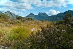 Cradle Mountain from Dove Lake, Tasmania