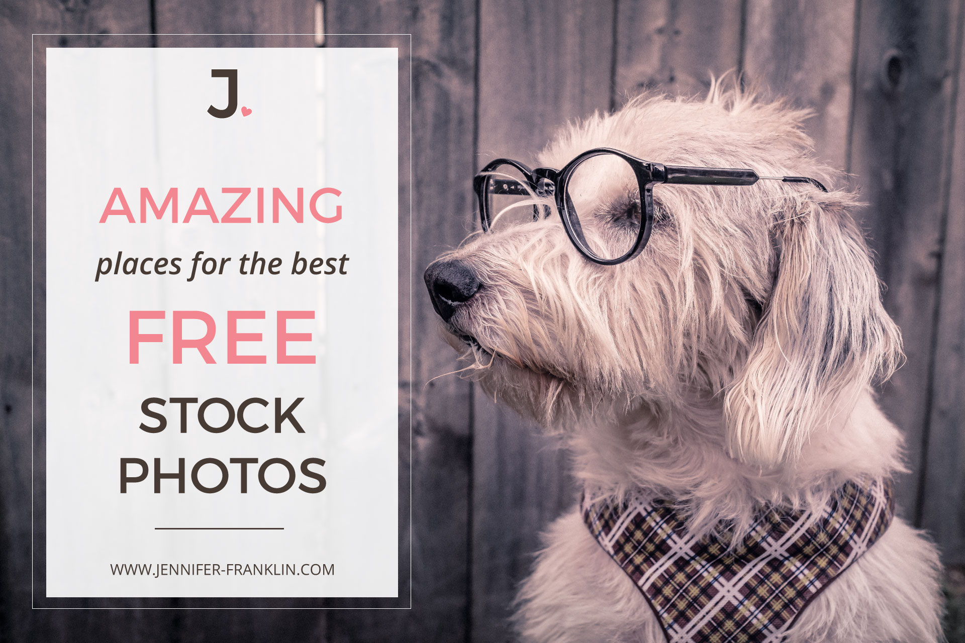 Best Free Stock Photo Websites One of the most important elements of your website, blog, and social media designs are the images that you choose. Using high quality photos will greatly enhance your projects and project a professional image of your brand. There are some popular paid image sites like iStockphoto and Shutterstock where you can find amazing images. You pay a fee for the rights to use the images as you wish.