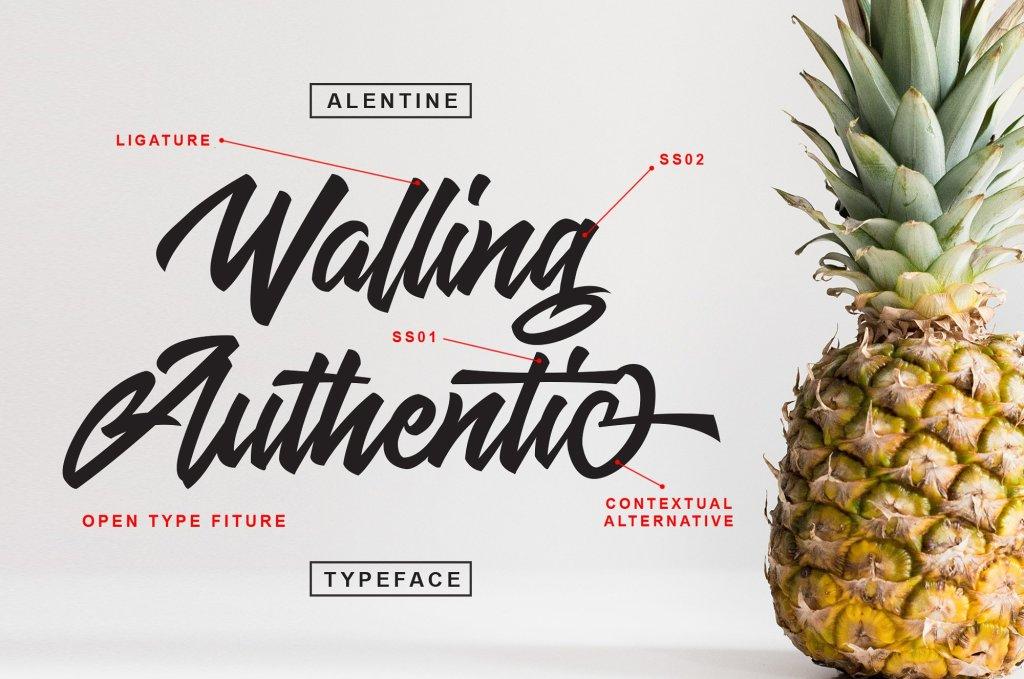 A clean modern script font Allentine