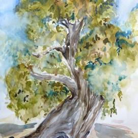 oak-of-the-golden-dream-001-(1)
