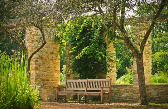 park-bank-park-bench-wood-161064