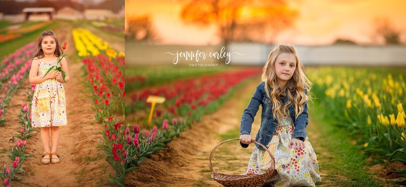 DFW Photographer Texas Tulips